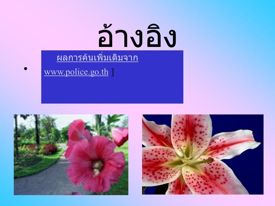 อ้างอิง ผลการค้นเพิ่มเติมจาก www.police.go.th ]